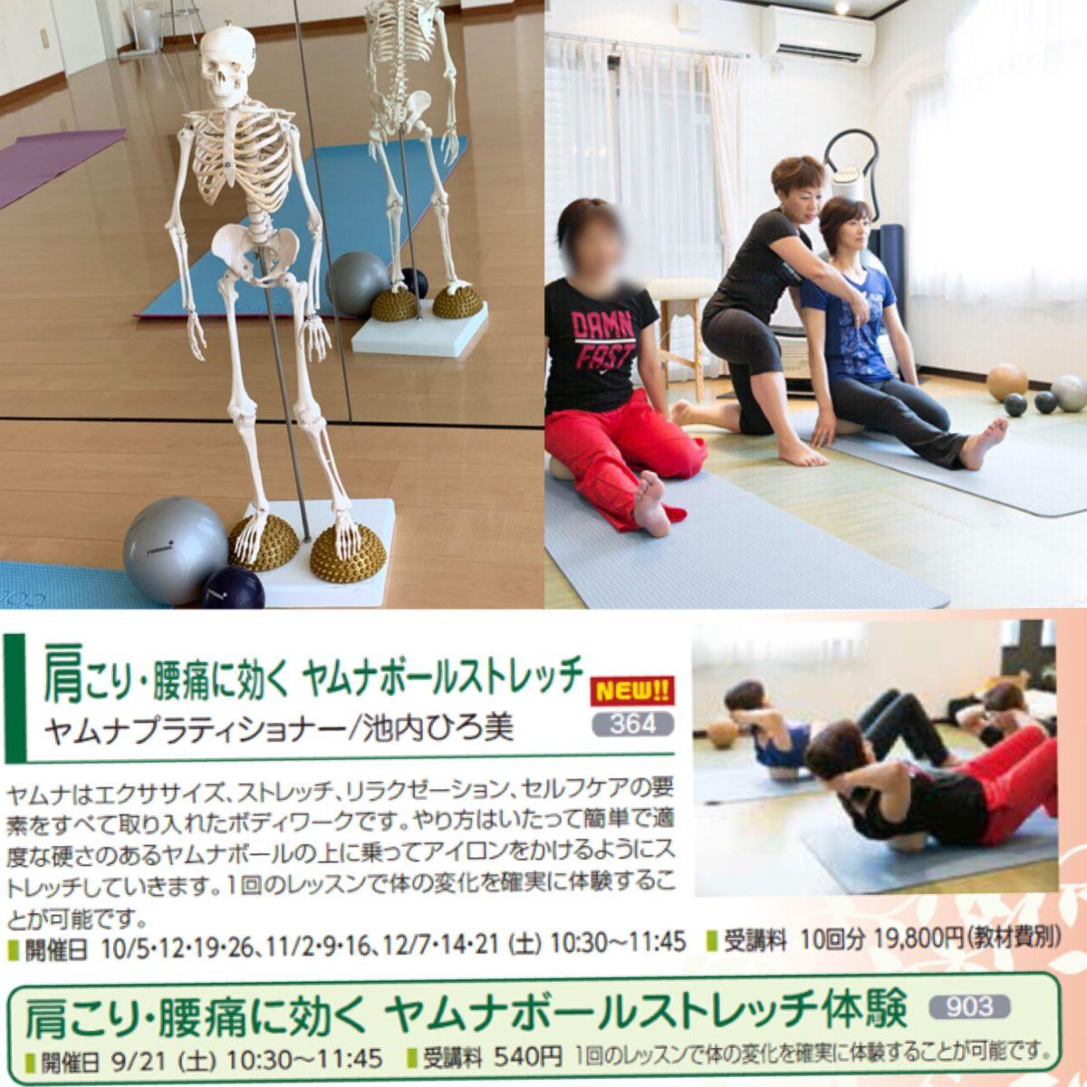 肩こり・腰痛に効く!ヤムナボール ストレッチ体験会のお知らせ
