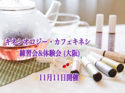 11月11日(日)キネシオロジー・カフェキネシ練習会&体験会in大阪